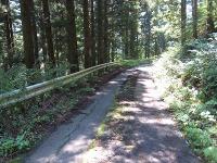 3rdakabanedownhill