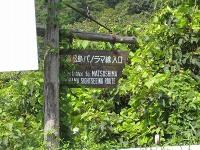 4thmatushimapanorama