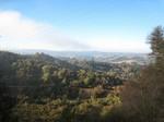 Oldlahondadownhill2