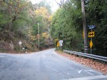 Redwoodgulchent