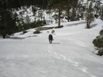 Snowtreking