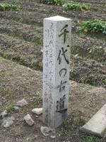 Chiyonohurumichi_4
